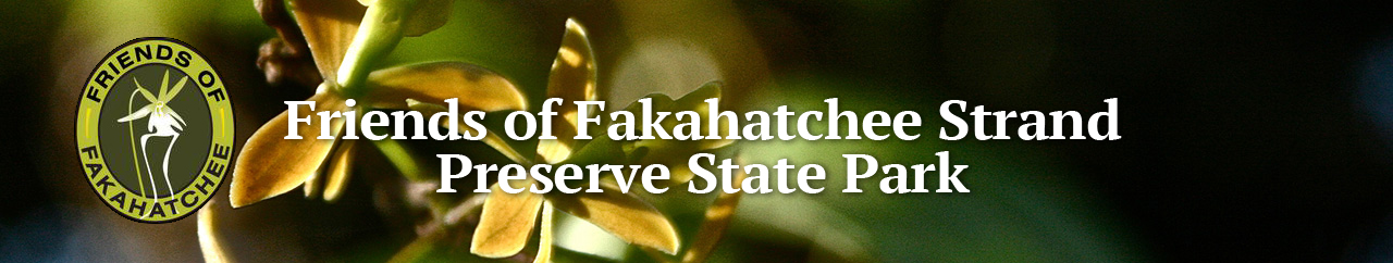 Friends of Fakahatchee Benefit Auction